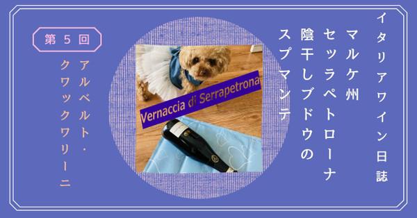 Vernaccia
